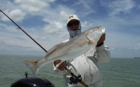 Texas Gulf Coast Red