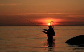 Corpus Christi Fishing Report