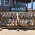 Marker 37 Marina